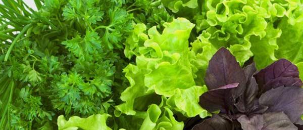 Зелень при запорах